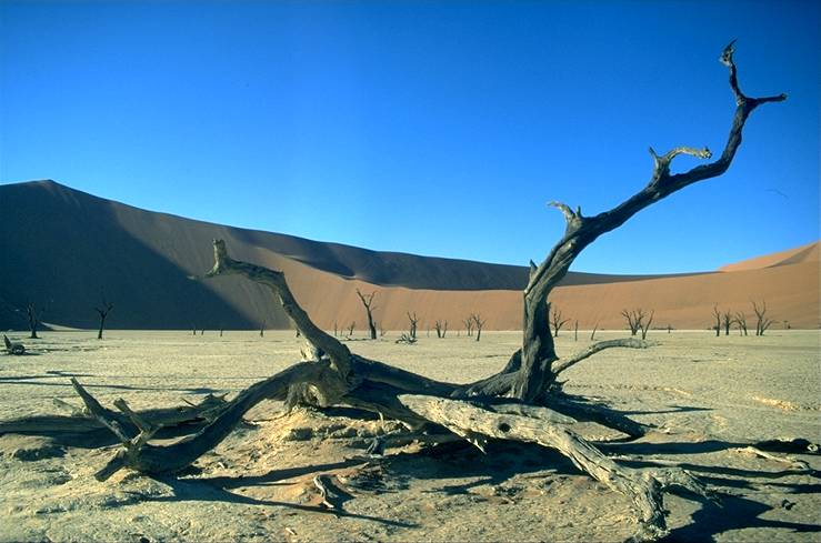das sossusvlei in namibia. Black Bedroom Furniture Sets. Home Design Ideas
